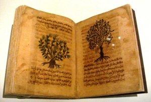 Medieval medicine book