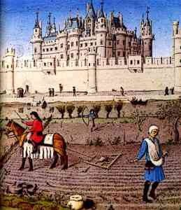 Medieval Peasants Castle Life