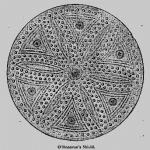 Buckler Shield Round