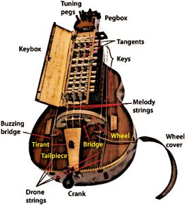 Hurdy Gurdy Instrument