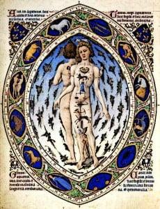 Medieval Diseases - Anatomy Book