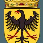 Medieval Coat of Arms Black Eagle