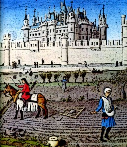 Medieval-Serfdom-Serfs-working-the-land