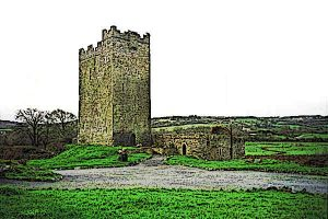 O'Dea castle is located in County Clare